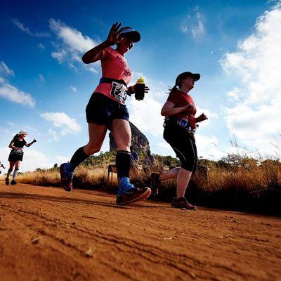 Big Five Marathon and Half-Marathon