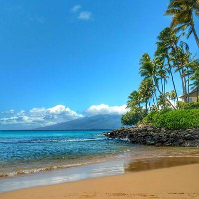 Maui Marathon, Half-Marathon, 10K & 5K