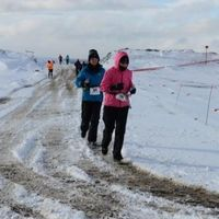 Danvers Runner Completes Marathons on all 7 Continents