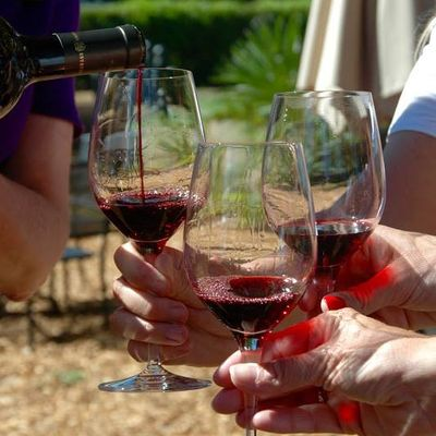 Napa to Sonoma Wine Country Half-Marathon